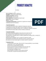 proiect_did._mos_nicolae.doc