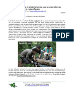Argentina and Brazil for the sake of the jaguars in the Iguaçu region (French)