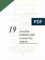 19 Analisis Common Size