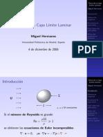 Presentacion Capa Limite