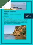 SFA E-newsletter Summer December 2012