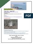 SFA E-newsletter Winter August 2012