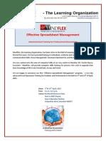 Mindflex Spreadsheet Management