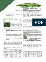 142-La Protection Chimique Raisonn e de La Laitue-PDF