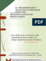 BASES NEUROANATOMICAS DE LAS FUNCIONES DEL NEURODESARROLLO