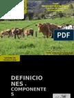 5. Sistemas de Produccion Animal 2013 - Lgr (1)
