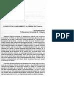 4- Conflictos Familiares en Materia Sucesoral