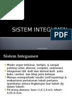 Sistem Integumen.ppt