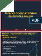 Razones Trigonométricas de Ángulos Agudos (1)