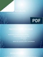 Practica 4 Redes Sociales