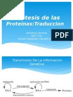 Biosintesis de Las Proteinas