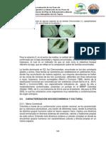 Informe Final POMCA Tapias Tomo 2 de 4 Parte 3 de 3