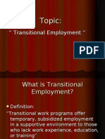 Transitional Employment