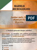 Prezentare_Bazele merceologiei