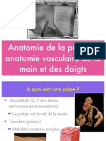 Anatomie vasculaire lambeaux