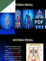 SistemaRenal - Apres.ppt