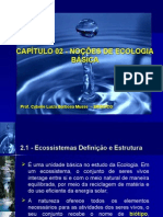 Ecologia Basica 2