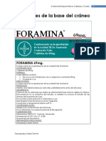 Anatheomia.com Esquemasdeanatomia Foramenesdelabasedelcraneo7