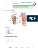 Patologias Frecuentes de Rodilla