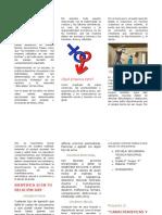 FORCE Equidad y Género Ultimo Proyecto
