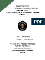 tugas praktikum TPT OA