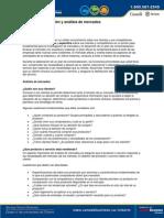 Guía de investigación y análisis de mercados.pdf