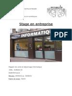 rapport de stage 2012 eureka
