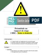 Rapport de Stage de Soins à Domicile 3BSI - 2014-2015
