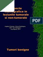 2011 Patologie Mx TEHNICIENI.ppt