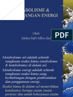 Metabolisme & Keseimbangan Energi