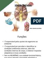 AULA 01 - Sistema Nervoso