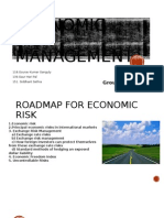 Economic Risk Management