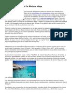 Tours Y Actividades En Riviera Maya