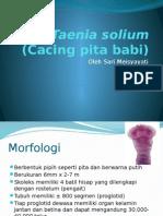 Taenia Solium (Cacing Pita Babi)(8b)