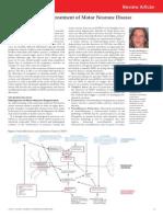 Developments in the Treatment of Motor Neurone Disease