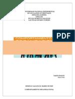 Comportamiento Organizacional (María Peña)
