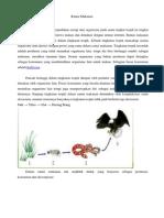 Rantai Makanan.pdf