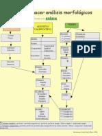 Guía análisis morfológicos