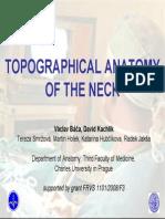 Topographicanatomy Neck Tisk