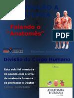 1. Introdução a Anatomia