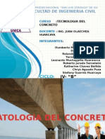 Patologias Del Concreto Cu