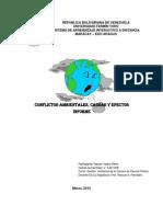 Informe Causas y Efectos de Los Conflictos Ambientales