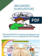 Habilidades Psicolinguisticas r