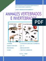 VERTEBRADOS E INVERTEBRADOS.doc