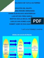 canales-de-distribucion-y-la-fijacion-de-precios.ppt