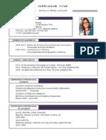 Curriculum Profesor 01