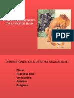 Clase 2 Evolucion Historica de La Sexualidad Dr. Luna