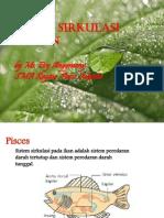 sistem sirkulasi hewan_sma_2012.pdf