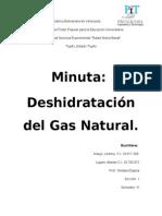Deshidratacion Del Gas Natural! Termo