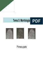MorfologiaMatematica